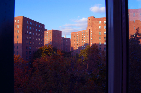 Newyorkny341pm