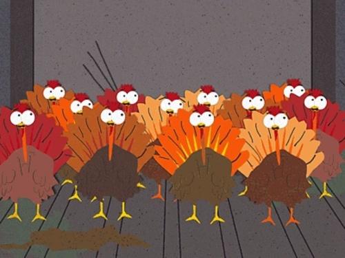 414_turkey_ride