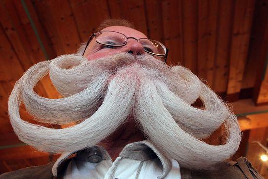Beard1310ffbe77a970c-550wi