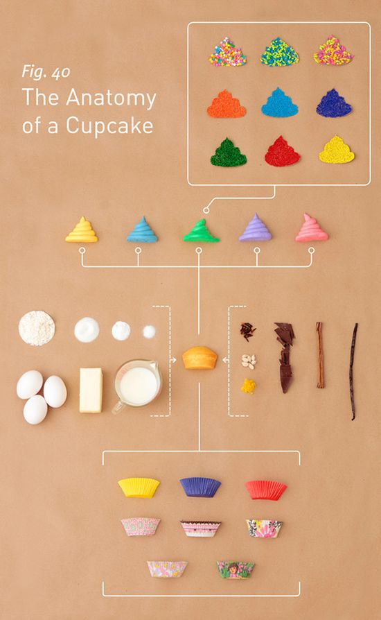 The-Anatomy-of-a-Cupcake
