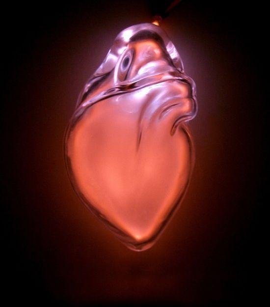 Organs-6-640x727
