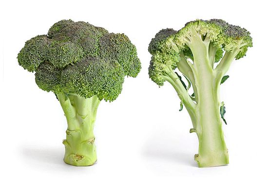 800px-Broccoli_and_cross_section_edit