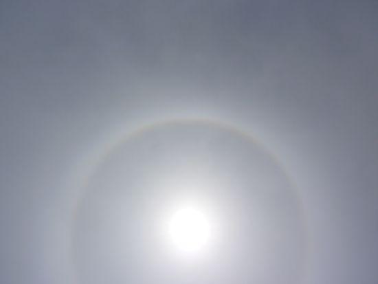 Sunforpoem
