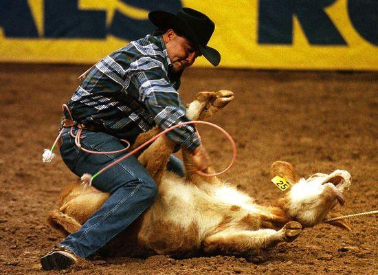 Calf_Rodeo_Hogtied
