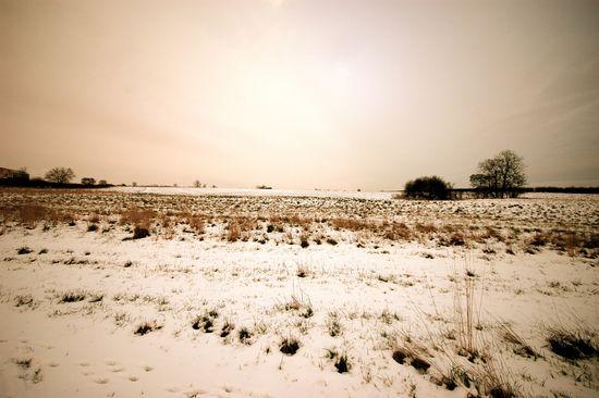 Snowfield