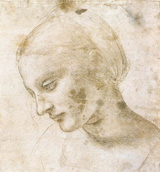 561px-Leonardo_da_Vinci_-_study_of_a_woman's_head