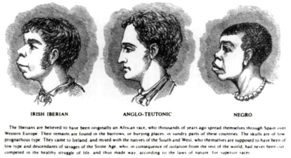 Scientific_racism_irish