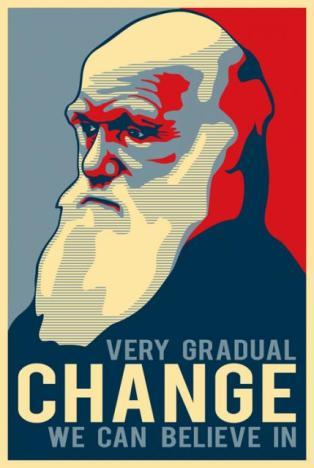 very-gradual-change