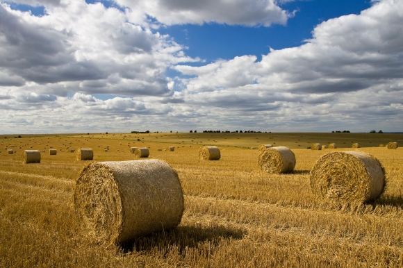 Straw bales, Cotswolds, Oxfordshire, UK