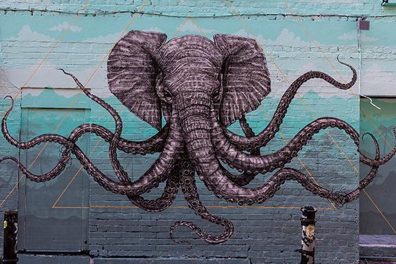 dish_octophant-SD