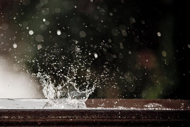 dish_rain2