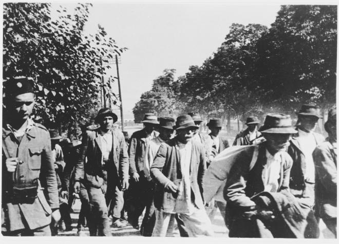 Jasenovac1