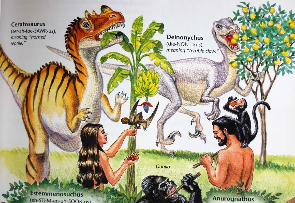 how you fund creationism acirc the dish hamdino