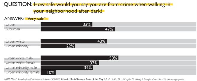 Neighborhood Safety