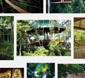 VFYW-Treehouse-2