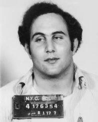 berkowitz_arrest201