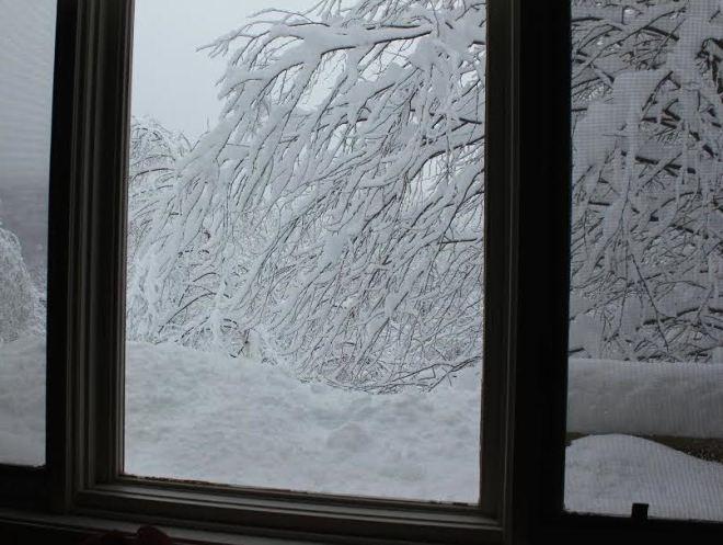 Warren, Vermont,10-14am
